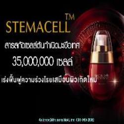 ฟรีโฆษณา ฟรีประกาศ สเต็มเซลล์,STEMACELL,Stemcell,นวัตกรรมความงาม,เซรั่มหน้าใส