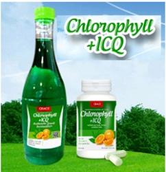 ฟรีโฆษณา ฟรีประกาศ น้ำคลอโรฟิลล์คิวเทน,เครื่องดื่มเพื่อสุขภาพ,,,