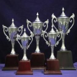 ฟรีโฆษณา ฟรีประกาศ ถ้วยรางวัล,จำหน่ายถ้วยรางวัล,ผู้ผลิตถ้วยรางวัล,รับออกแบบถ้วยรางวัล,ถ้วยรางวัลพลาสติก
